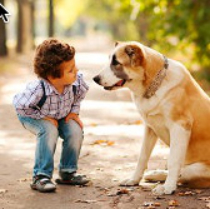 Do Dogs Perceive Children Differently Than Adults?