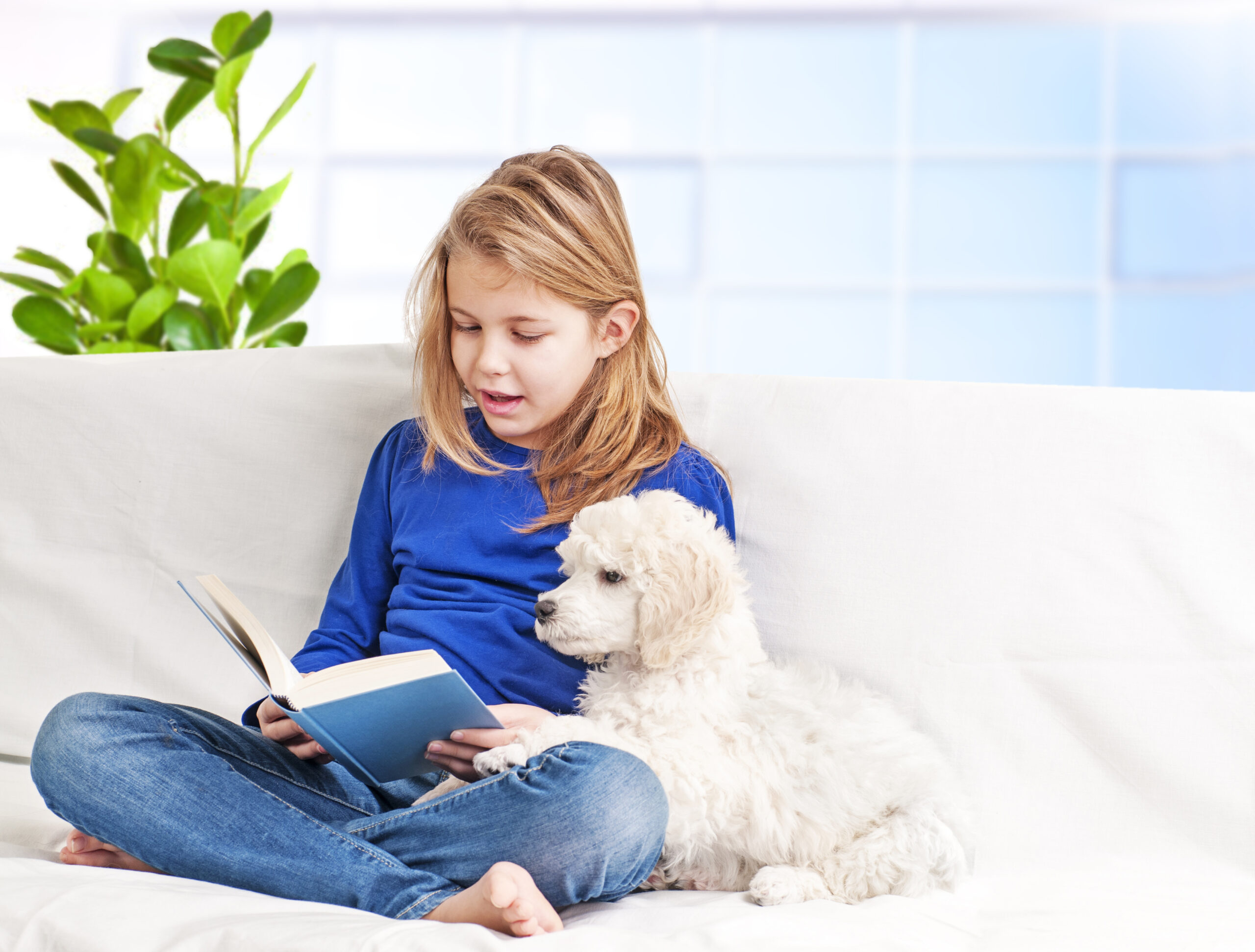 reading to the family dog