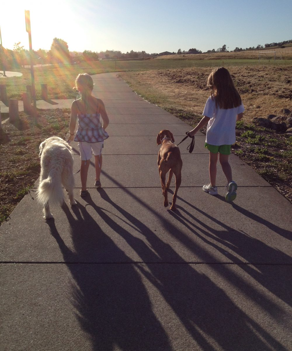 Girls walking dog